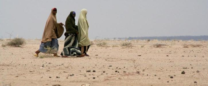 Take action to mitigate the effects of climate change in the Sahel