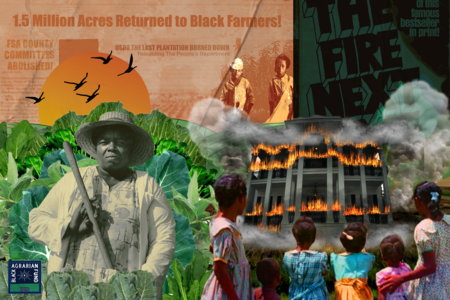 Sign Our Petition in Support of the Justice for Black Farmers Act of 2020 to Cancel Pigford Debt