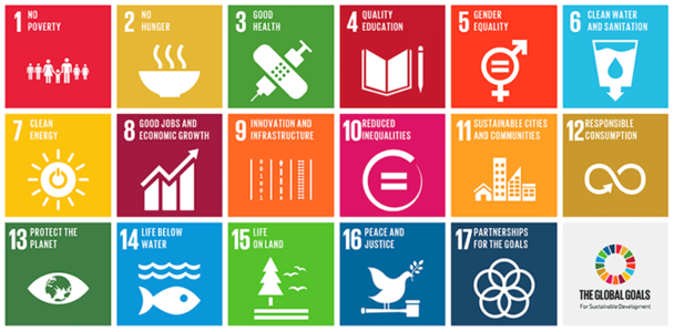 Adopt the Sustainable Development Goals in Aotearoa