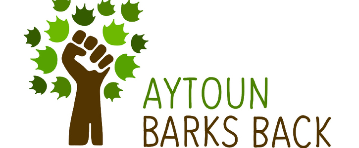 Protect the Aytoun trees in Manchester city centre