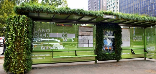 Help The Bees and Environment By Making All Bus Shelters Wildflower Gardens