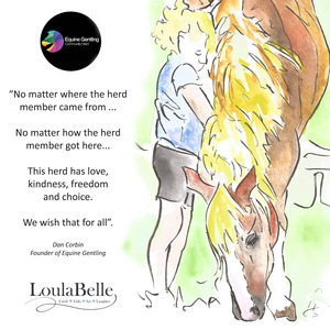 Save our horse rescue and mental health charity