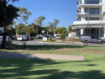 Protect the trees in Cotton Tree Park
