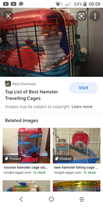 Ban inappropriate cages for hamsters!!