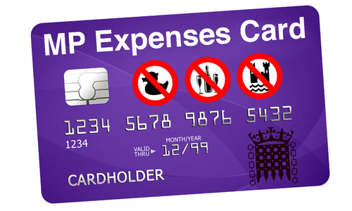 Image result for expense claims mps'