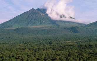 Save Virunga National Park from SOCO International oil and gas exploration