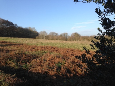 Save Rural West Sussex from Overbearing Greenfield Developments